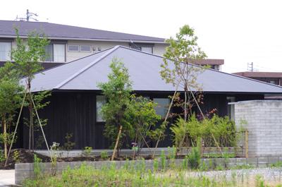 焼杉の家の庭植栽