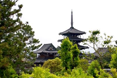 京都奈良の旅